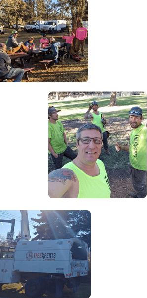 About - Central Oregon Tree Xperts